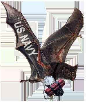 bat----